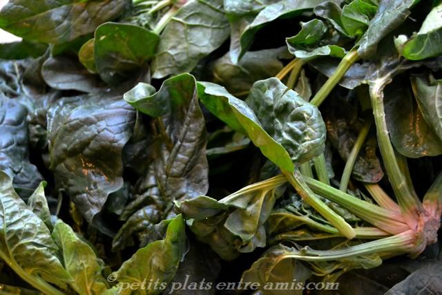 épinards frais en branches