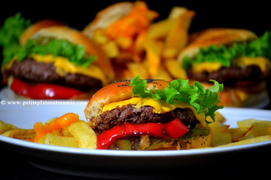 présentation d'un burger 6 en 1
