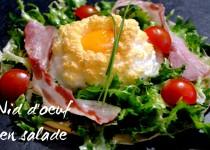 Nid d'œuf en salade