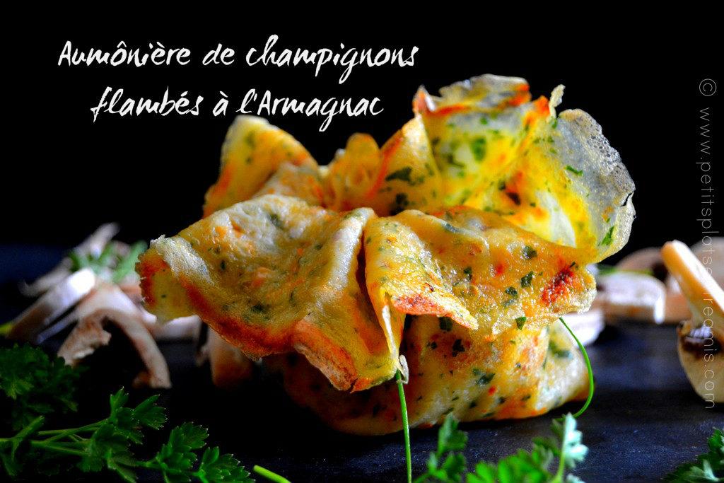 aumônière de champignons flambés à l'Armagnac