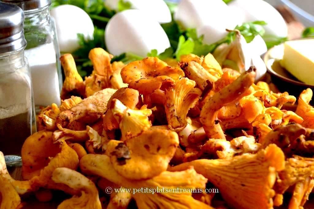 ingrédients pour omelette aux girolles