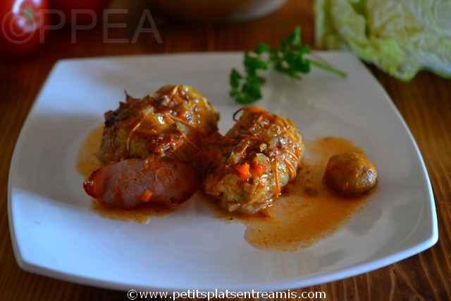 Assiette de petits choux chinois farcis petits plats for Plats entre amis