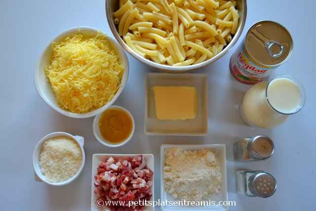ingrédients pour gratin de macaronis au fromage