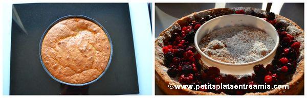 habillage gâteau magique aux fruits rouges