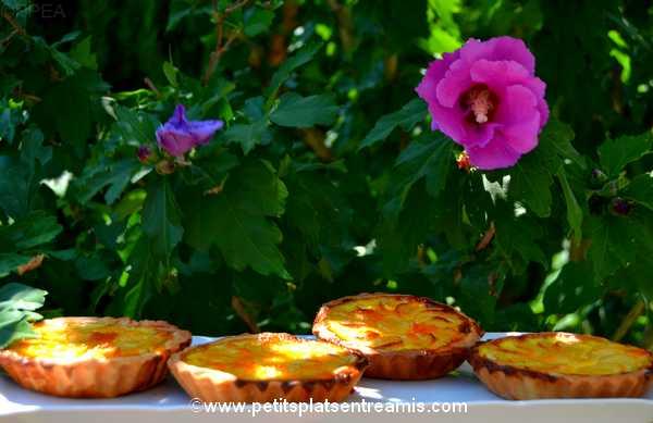 idée tartelettes-aux-pommes