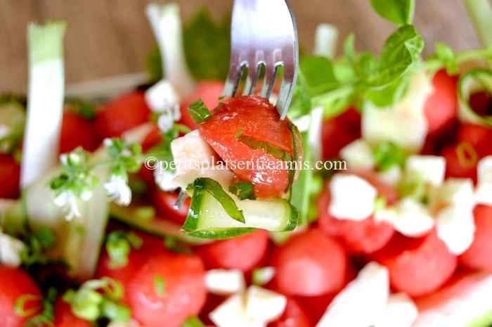 bouchée de salade à la pastèque
