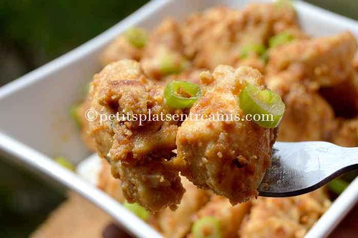 gout-du-poulet-sauce-satay