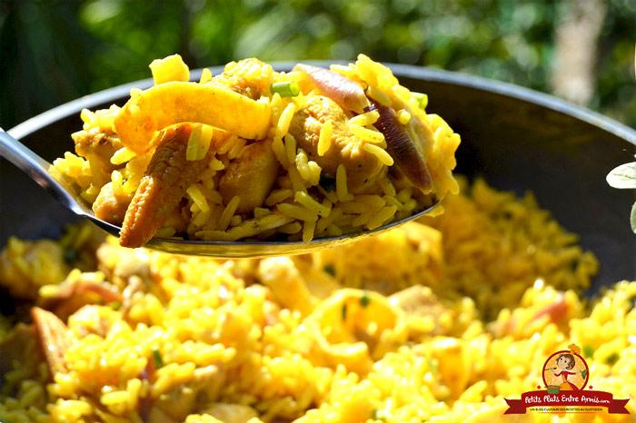 gout-du-riz-safrane-au-poulet
