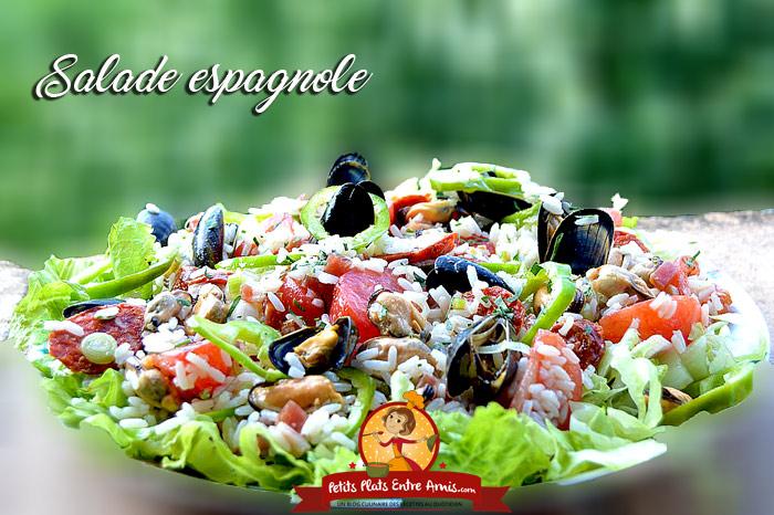 Salade espagnole petits plats entre amis for Plat entre amis facile
