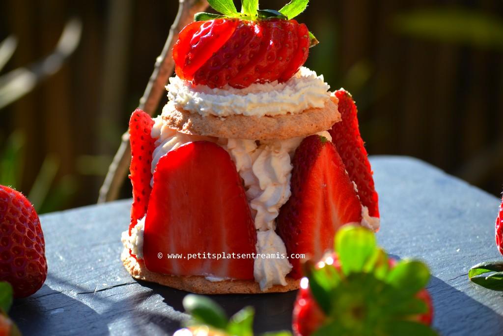 fraises chantilly sur dacquoise