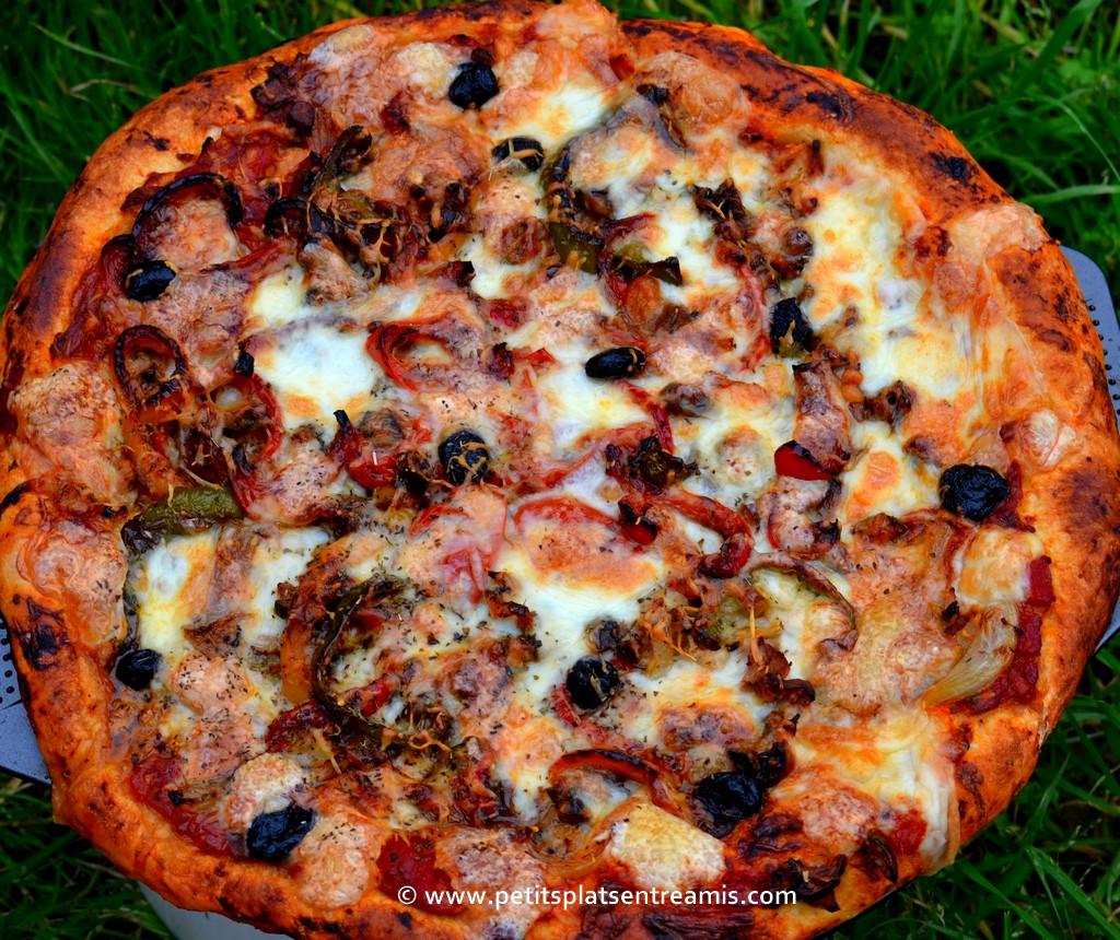 pizza au thon dans l'herbe