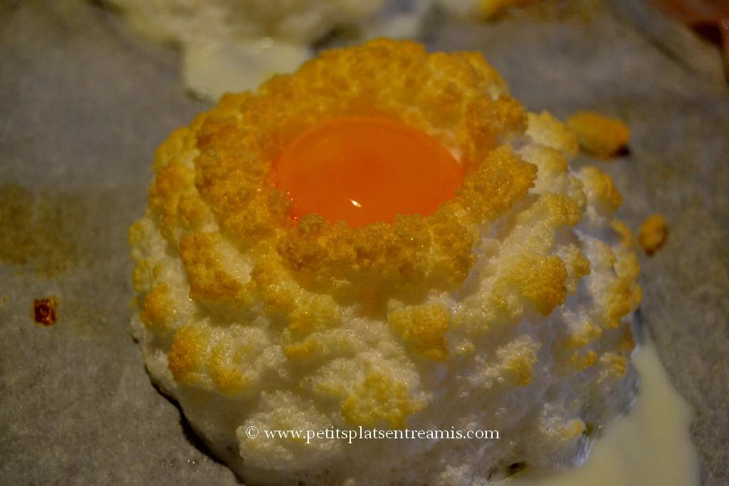 nid d'oeuf avec jaune