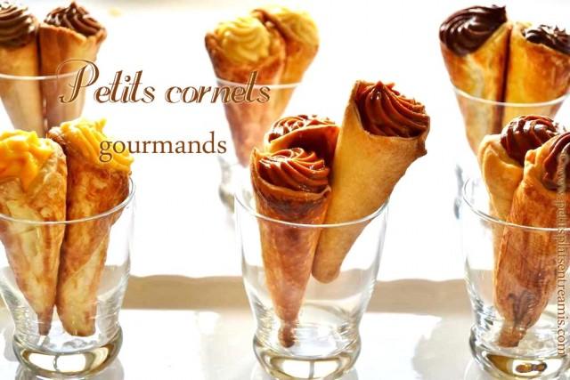 Petits-cornets-gourmands
