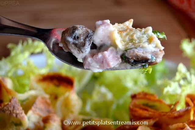 bouchée d'aumonières-jambon-et-champignons