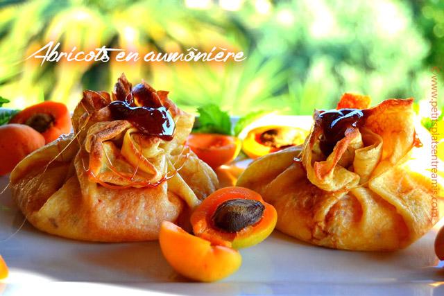 Abricots en aumônière