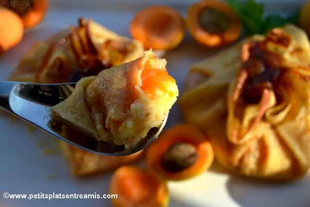 bouchée d'abricots-en-aumonière