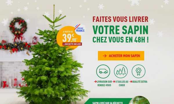 Commander son sapin de Noël en ligne | Petits Plats Entre Amis