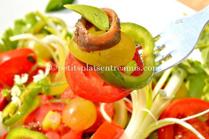 gout-de-la-salade-de-tomates-et-poivrons