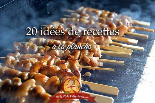 20 idées de recettes à la plancha