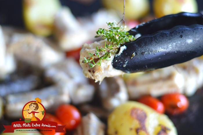 Cuisson Roussette-saumonette à la plancha